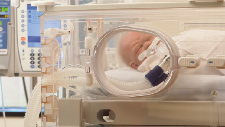 inter 7 plus neonatal